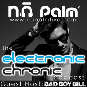 Na Palm - Electronic Chronic Podcast Episode 001 w/ DJ Martinson & special guest Bad Boy Bill