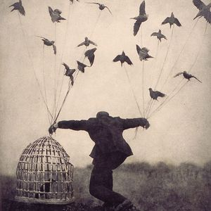 Flying without wings by Dorothy T  | Mixcloud
