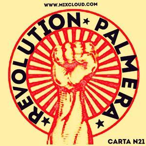 revolutionpalmera