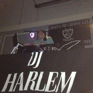 DJ HARLEM REGGAE MIX1