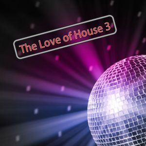 Love of House 3