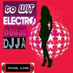 to wit electro house