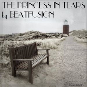 THE PRINCESS IN TEARS by BEATFUSION