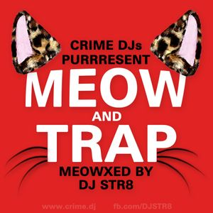 DJ STR8 - Meeow And Trap