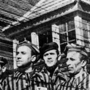 Unit 5 Suffering: Part 3, Genocide