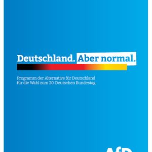 AfD-Programm zur Bundestagswahl 2021