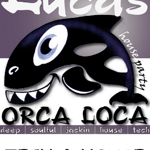 ORCA LOCA TECH & HOUSE SESSION 01/12