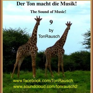 Der Ton Macht Die Musik 009 (The Sound of Music 009) by TonRausch