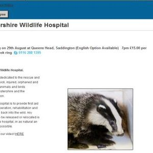Leicestershire Wildlife Hospital - life after being raided