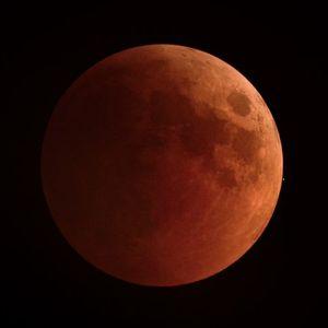 Eva Pacifico - Full Moon in Leo