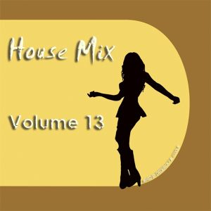 DFMC House Mix Volume 13