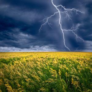Like a Summer Storm