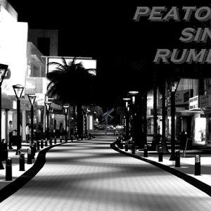PEATONAL SIN RUMBO 07-11-2014