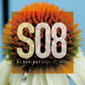 DJ SHO-HEY DJ MIX 2016_08