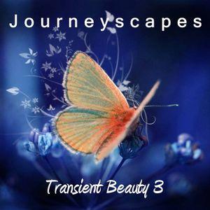 PGM 096: Transient Beauty 3