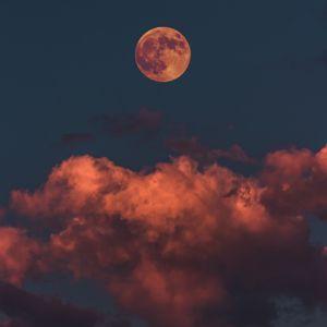 The moon the mooooon the mooooooooon