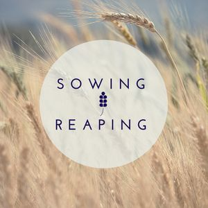 Episode 10: Sowing and Reaping