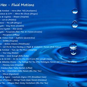 Fluid Motions