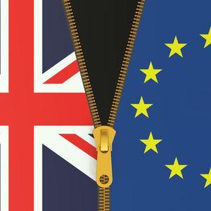 EU referendum feature