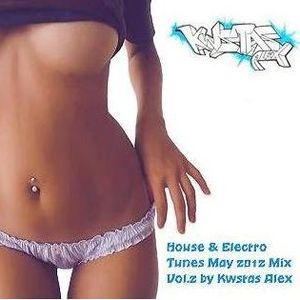 House & Electro Tunes May 2012 Mix Vol.2