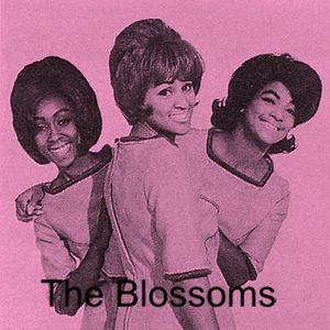 Challenge Records - Part 3: Ladies of The Label