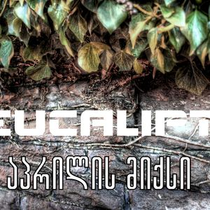 Eucalipt - April Mix (Best of the Month)