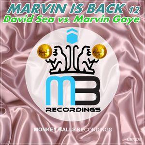 David Sea vs. Marvin Gaye - Marvin is Back 2012