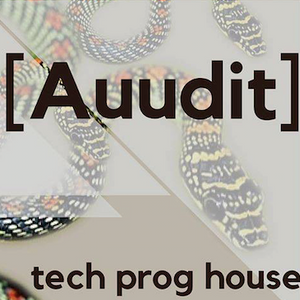 Best of Auudit Part 1: Tech House ( July 2016): Live from Zigfrid Von Underbelly, London