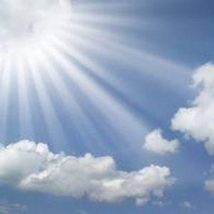 Yves-S SUN = GARDEN