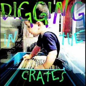 Dj Moe Vol 49 Digging In The Crates Old school Mix