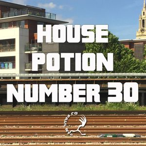 House Potion Number 30