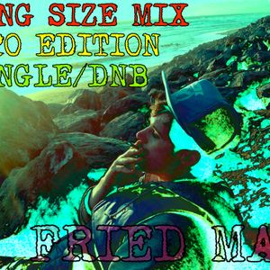 FRIED MAN - Special 420 Drum n Bass/Jungle King Size Mix 09.16.05