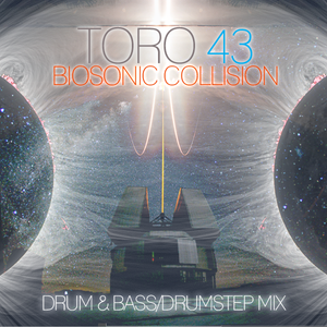 TORO 43-Biosonic Collision