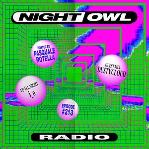 Night Owl Radio 213 ft. i_o and Dustycloud