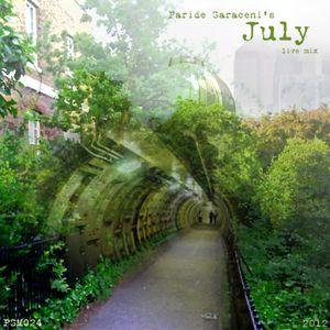 PSM024 - Paride Saraceni - July Mix 2012