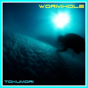 TOKUMORi