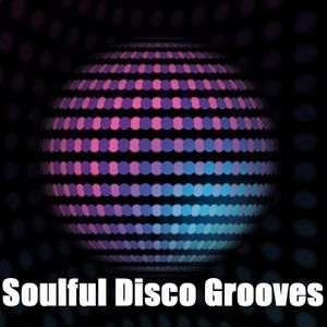 Soulful Disco Grooves Vol 3
