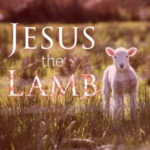 Jesus the Lamp