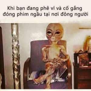 chat gay nghien thanh koi
