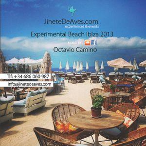 @Experimental Beach Ibiza 2013