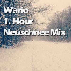 Wario - Neuschnee Mix