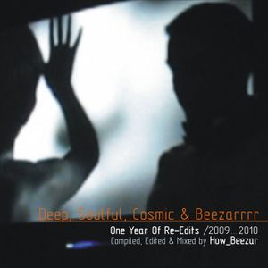 How_Beezar: One Year Of Re-Edits /2009-2010