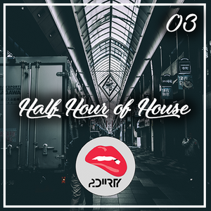 Half Hour of House / EP #03 [2DIIRTY]