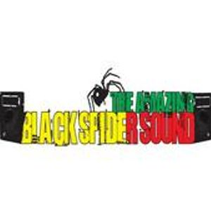Black Spider Foundation -Veteran DubMix mixed by Tiger Bone