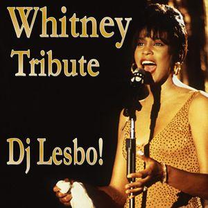 Whitney, Tribute - Dj Lesbo!