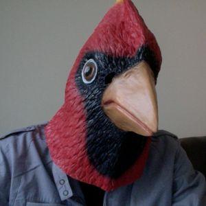 Birdmaster Kevin - RWDFM Broadcast 001