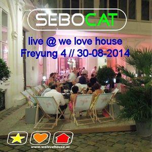 Sebocat - live @ we love house - Freyung 4 // 30-08-2014