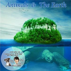 Animals & The Earth