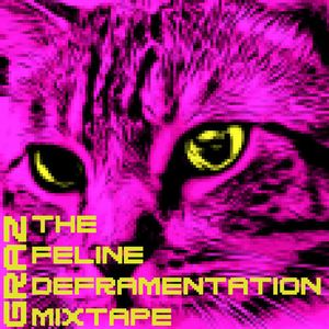Graz - The Feline Defragmentation Mixtape