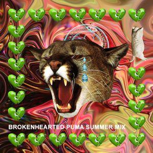 Brokenhearted puma